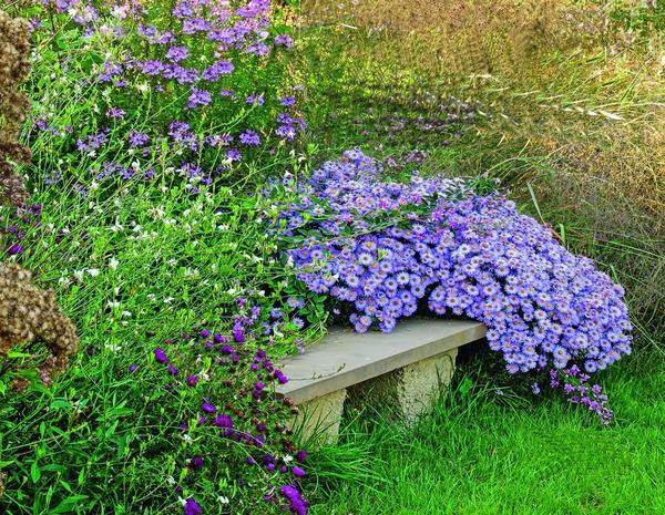 Среди астр и декоративных трав в укромном уголке можно насладиться отдыхом. Важно: в холодное время года камень уже не накапливает тепло, так что не забудьте захватить подушку.