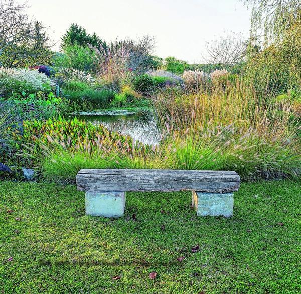 Естественностью пленяет обветренная толстая доска на каменных ножках-подставках - идеальное сочетание материалов для сада декоративных трав.