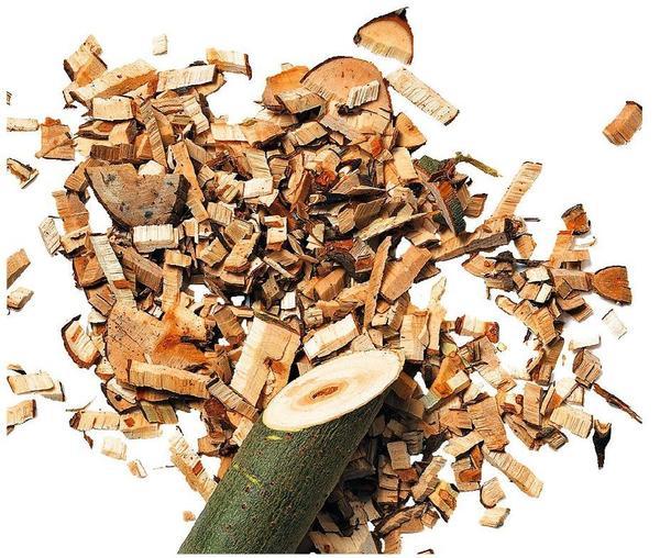 Садовый измельчитель превратит бесполезные отходы в мелкие опилки