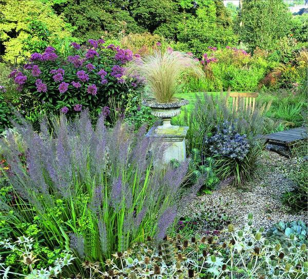 В созданных по их подобию садовых композициях частыми соседями этих гигантов становятся разнообразные злаки