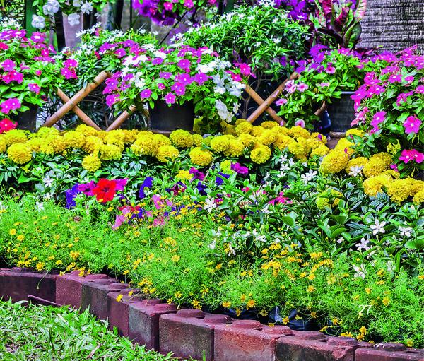 Обитатели цветника