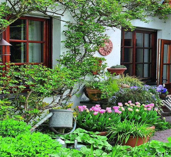В вашем саду наверняка есть место для изысканных и нежных ранних цветов