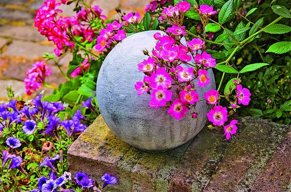 Классические садовые аксессуары все чаще изготавливают из бетона, а не из камня. На фото ремонтантная роза Mozart нежно обнимает бетонный шар.