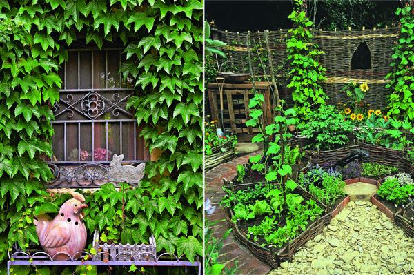 Слева: девичий виноград подарит фасаду плотный «плащ». Справа: грядки сделайте одновременно и декоративными, и практичными.