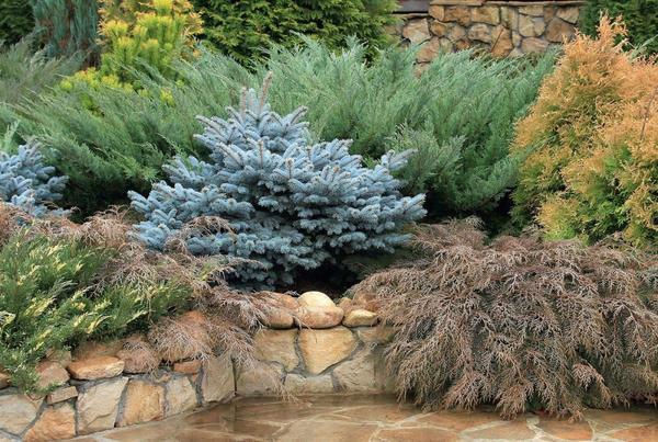 Эффектно оформить сад можно и без особых затрат.