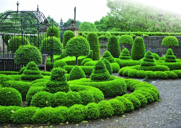 Деревья и кустарники с округлыми кронами делают садовый пейзаж более умиротворяющим.