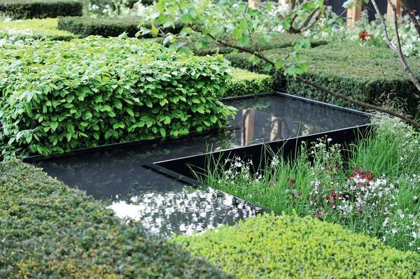 Водоем может повторять очертания зеленых бордюров. Такой дубль выглядит как минимум, необычно.