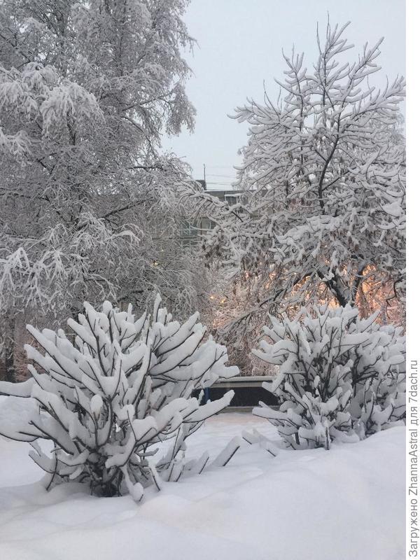 Зима как в сказке