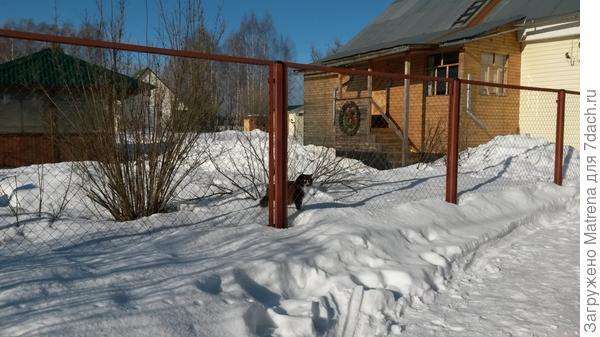И Мотя, хотя бы зимой не шляется где попало))