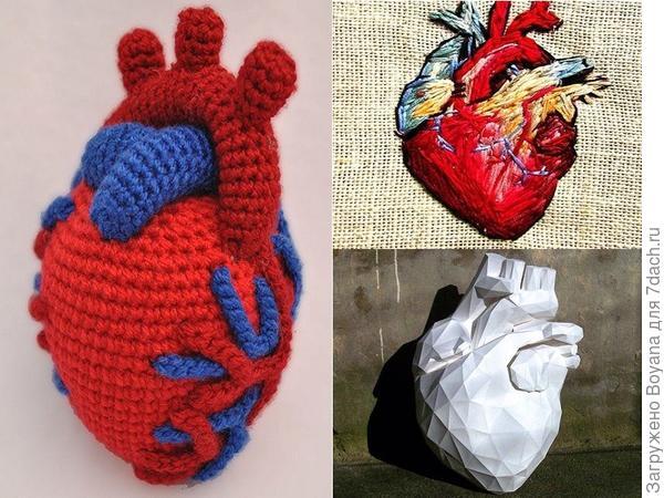 """""""Натуральное"""" сердце. Фото с сайта https://ru.pinterest.com/"""