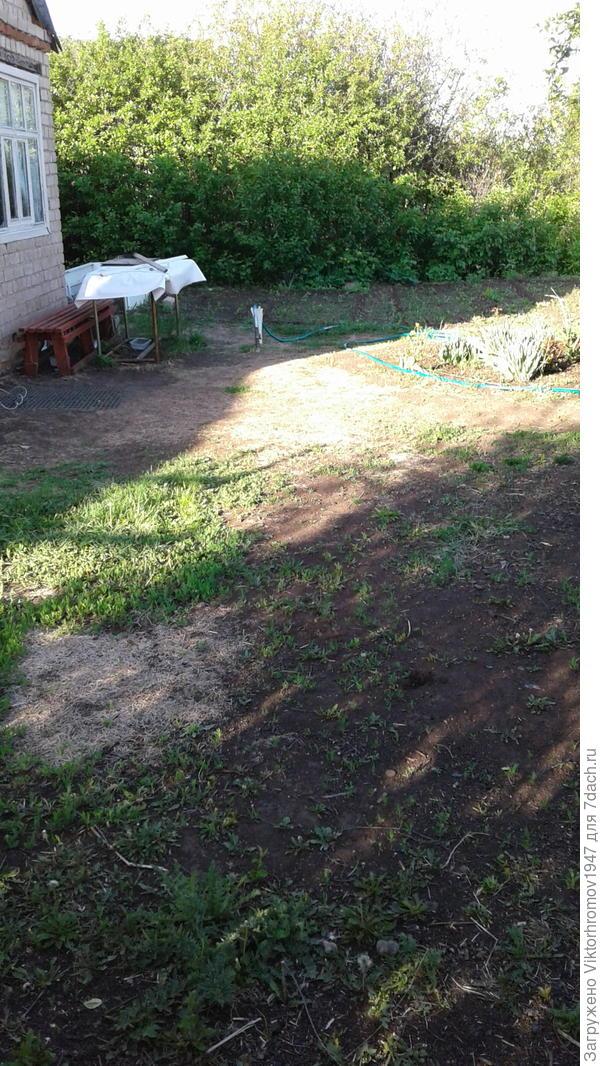 Большая площадка выход из домика,место отдыха,газонная травка ещё не выросла,а уход требует.