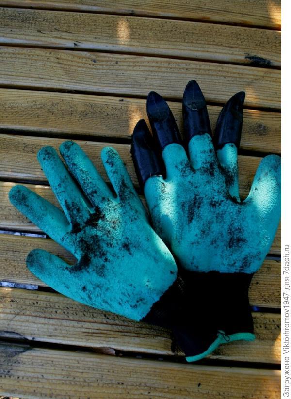 На фото грязные рукавицы после пересадки цветов. Решил певый раз подвергнуть их стирки.