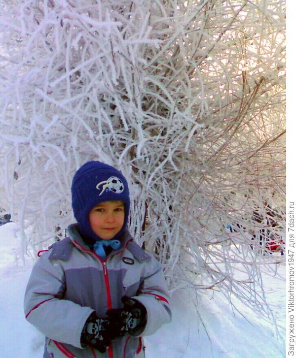 Замечательное солнечное утро 31 декабря, а всю ночь шёл обильный снегопад,покрывший всё в округе белоснежным снегом.