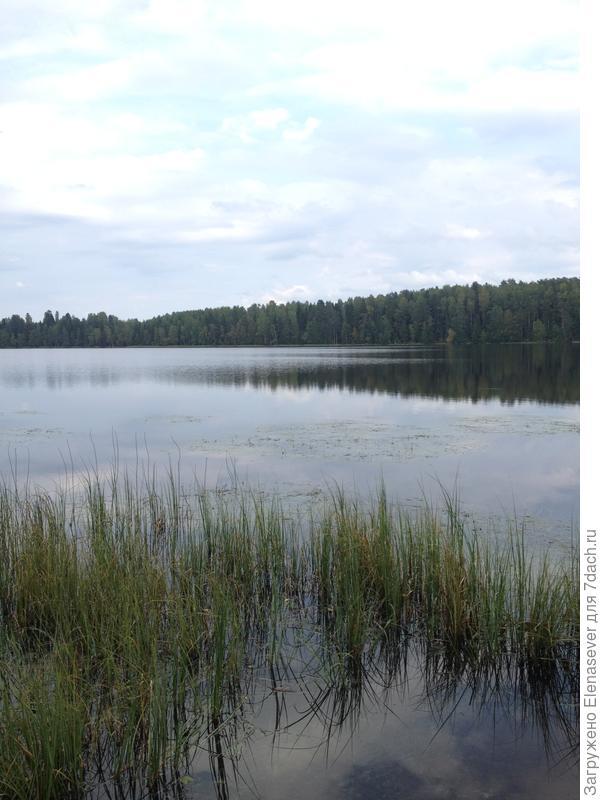 еще одно озеро рядом с дачей
