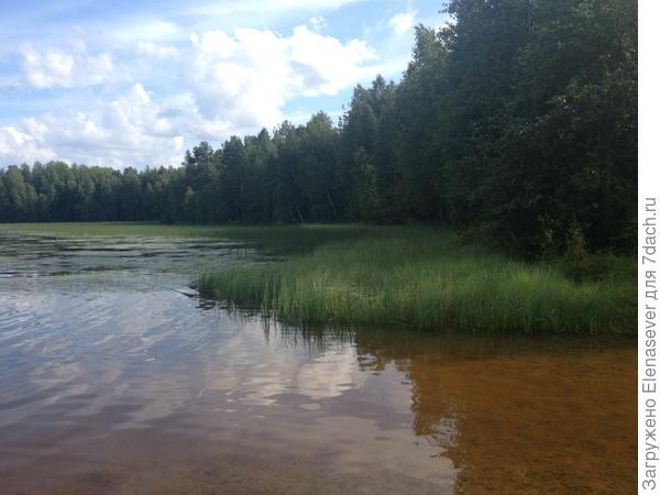 скорей бы уже тепло стало....и купаться, купаться