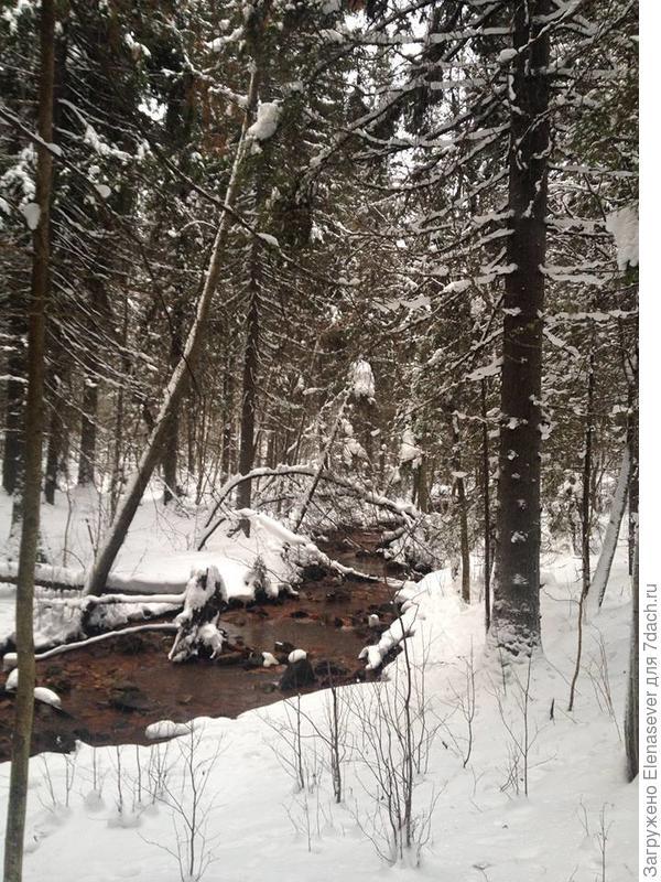 Речка Лососинка зимой