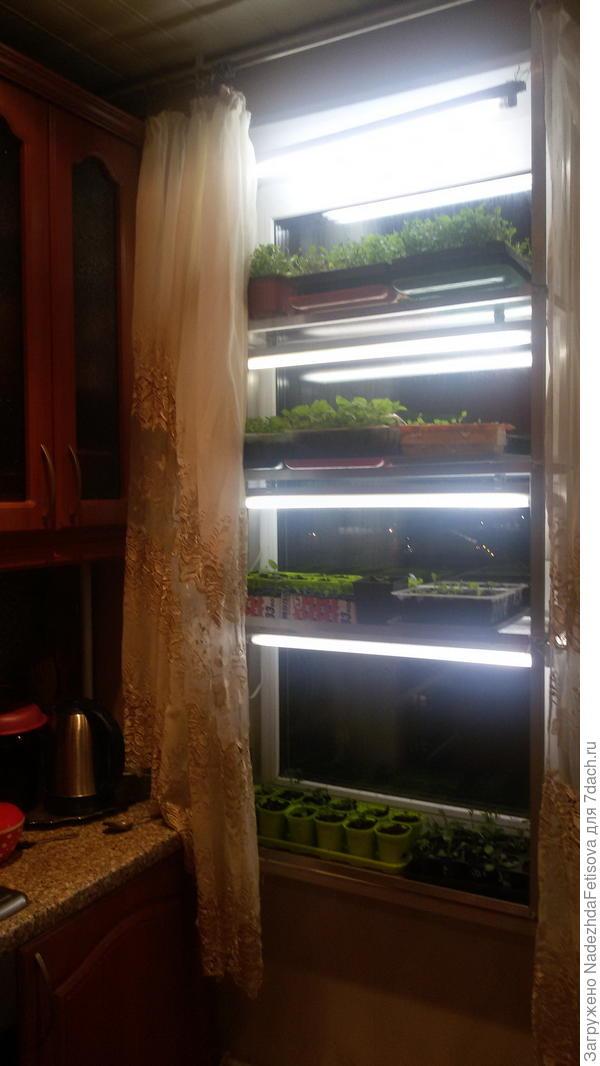Это опять загруженный стеллаж на кухне, аналогично еще два окна ( о поскольку пишу вечером в др. комнатах у меня уже спят -не могу сфотографировать)