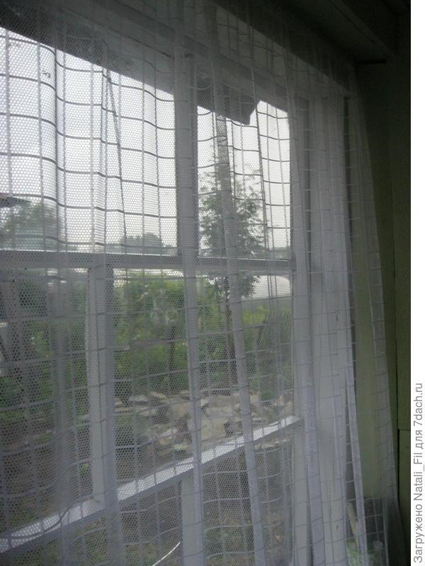 Покрасили окна.