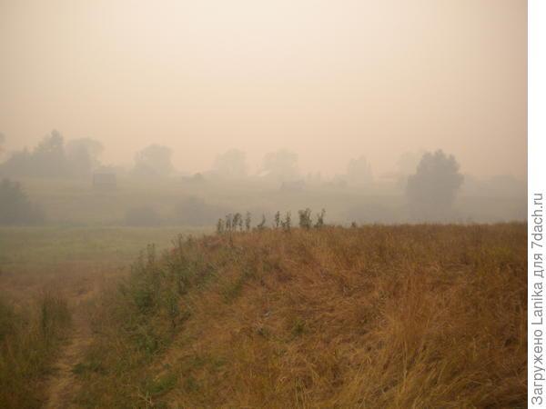 Август 2010-го, высохшая трава и дым от лесных пожаров.