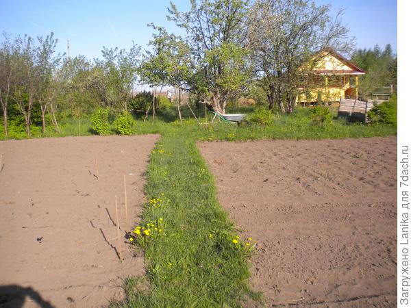 Два участочка - слева и справа от тропки.