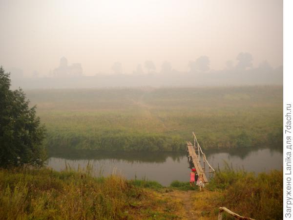 Это 2010 год. Горели леса, все в дыму. Мы с девчонками пошли за козьим молоком в соседнюю деревню.