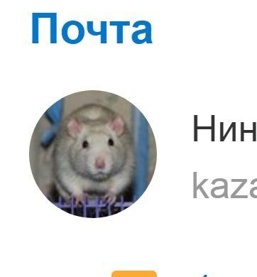 Крыска!