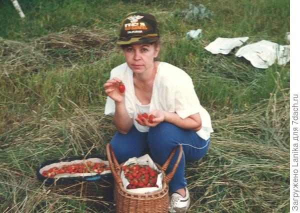 1993 год, на куске бывшего колхозного поля неплохой урожай. Мы полны надежд. Развал Союза, развал промышленности - просто нечем стало кормить двоих пацанов, выращивали необходимое - картошка, лук, морковь, огурцы, помидоры, кабачки. Ягоды - земляника, черная, красная смородина, жимолость, яблок не дождались.