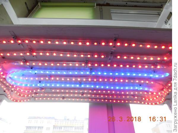"""""""Световая панель"""", так сказать. Фотографировала при дневном освещении."""