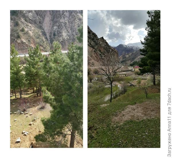 На фото слева склон нашего участка  ведущий к реке. А справа ровная площадка и нижняя граница нашего участка. Внизу река.