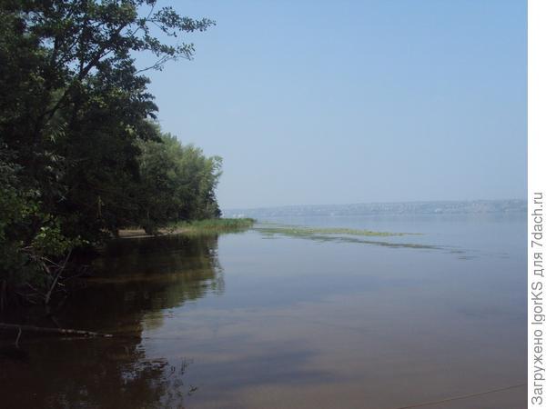 Наша цель - обрывистый берег за водорослями...