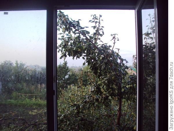 Чуть забыл окно на ночь закрыть и всё - утром уже кхе-кхе!