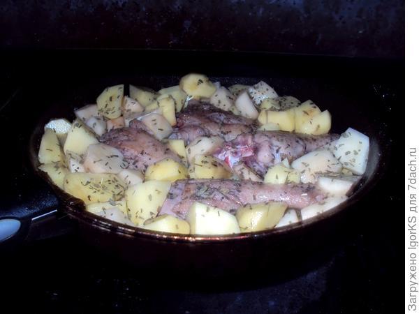 Добавляем утку к картошке, посыпаем эстрагоном (тархун) и ставим в духовку