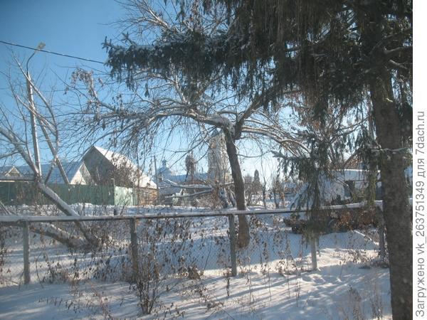 Фото сделано из окна. Склонившееся дерево (не знаю какое и так планировали убирать), до него от дома 10-11 м. Сторона восточная. Как думаете, было бы так хорошо?