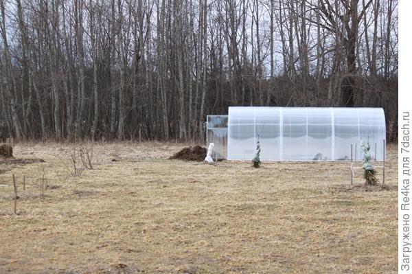 Теплицу, как и все строения ставили по периметру участка, чтобы затем закольцевать периметр усадьбы забором.