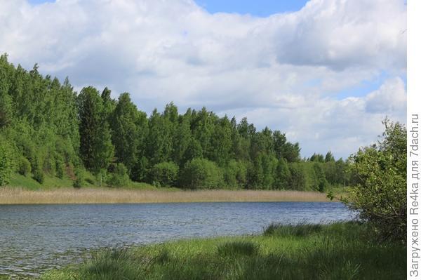 На нашем озере