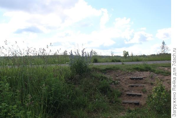 Несколько камней - ступени с дороги к нам на участок.