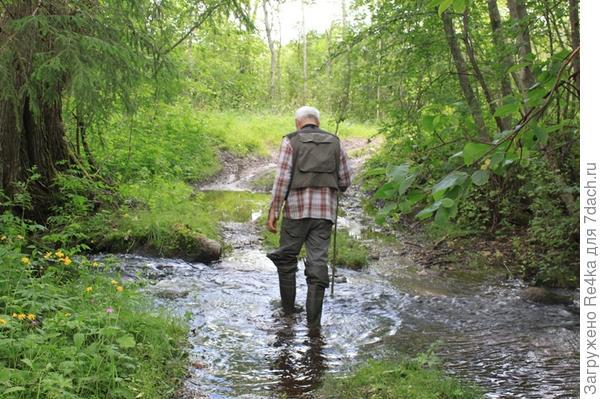 ...прощупывая дно встречающихся на пути ручьёв...