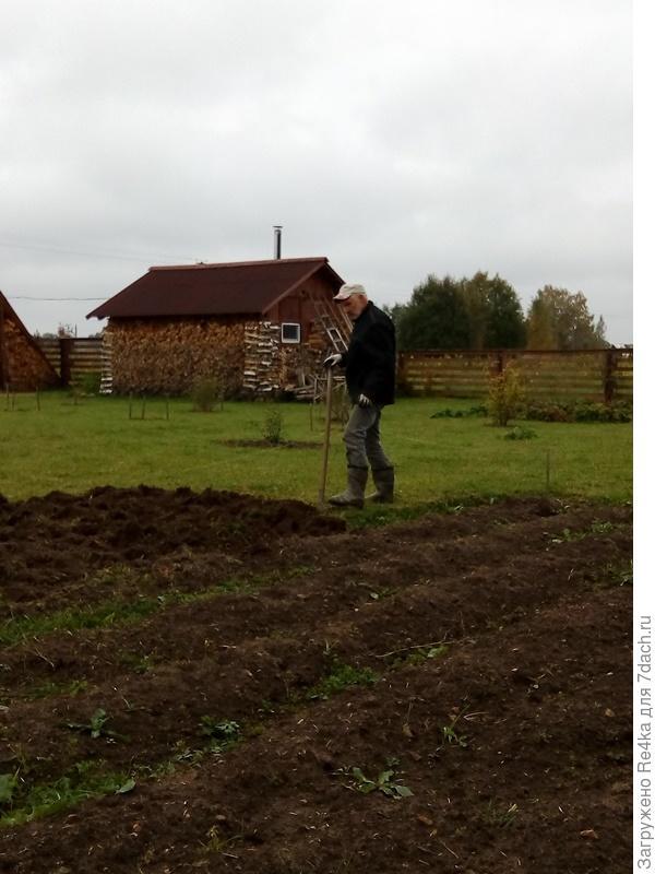 Огород перекопали