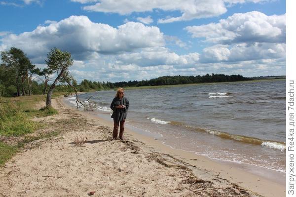 Одно из озёр в Новгородской области недалеко от г. Боровичи.