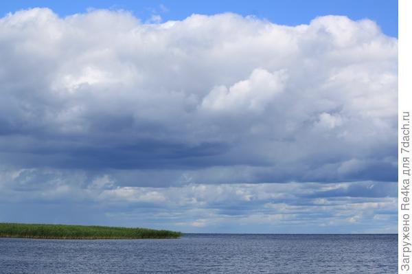 Берег Псковского озера