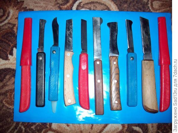 А это ножи для проведения прививок.