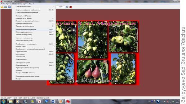 Интерфейс программы IrfanView