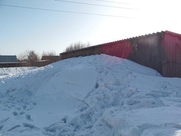 Шестого марта внуки покоряли эту снежную крепость. А под ней - молодые кустики смородины и старые крыжовники