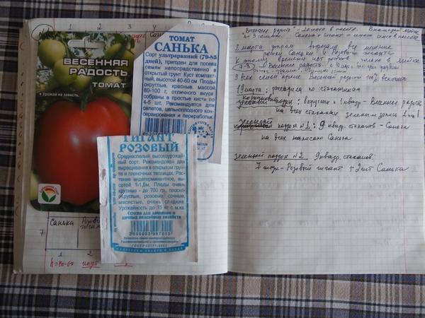 А вот и записи о кассете с помидорами для теплицы, где посеяны сорта Санька, Гигант розовый и Весенняя радость (пакетики от этих семян)