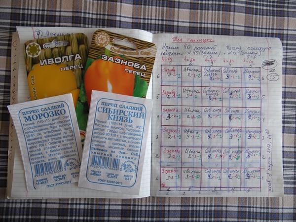 Пакетики от семян перцев сортов Морозко, Иволга, Сибирский князь и Зазноба, а также записи о кассете с перцами этих сортов