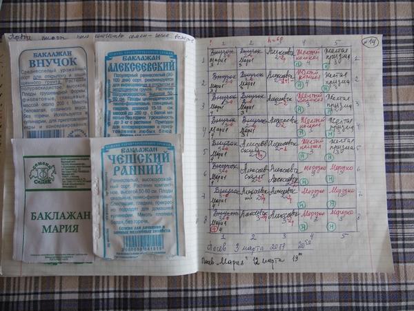 Это пакетики от семян и записи о кассете с баклажанами. Есть в таблице и записи о перцах, помеченные буковкой Н в кружочке (растения для огорода моей невестки Нади)