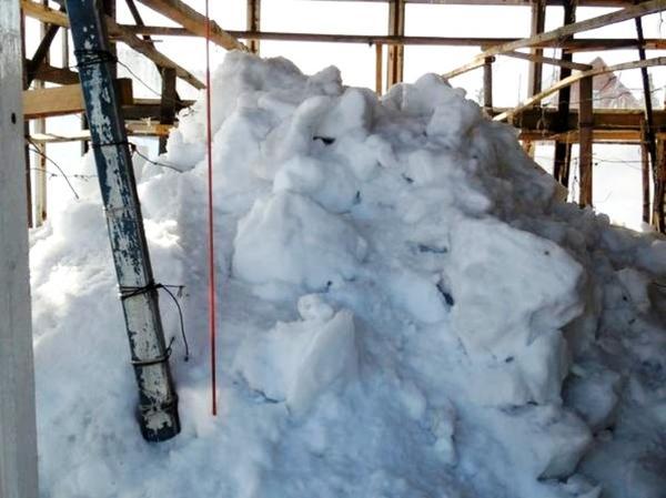 Вот сколько снега набросали в теплицу. Еще не весь растаял