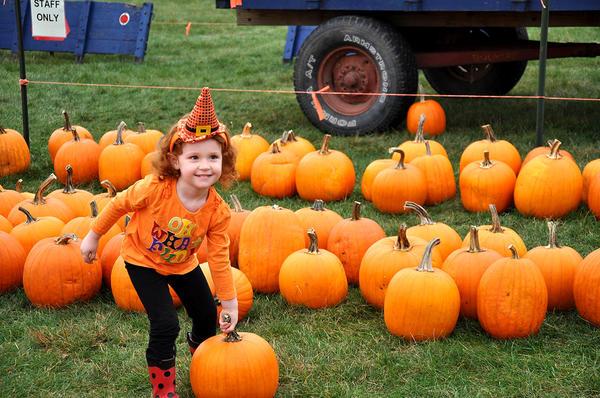 Множество мероприятий на фестивале предназначено для детей. Фото с сайта arboretum.psu.edu