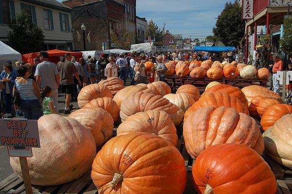 Народ во время фестиваля закупает тыквы для предстоящего Хеллоуина. Фото с сайта seedsofeaden.com
