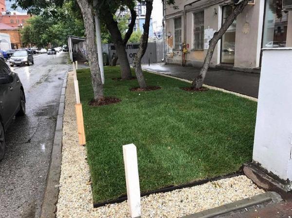 А вот как газон выглядит теперь. Фото с сайта pikabu.ru